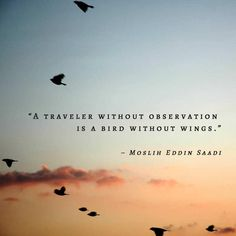 """″A traveler without observation is a bird without wings."""" - Travel the world! Www.wetravelandblog.com"""