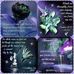King James Bible Verses!