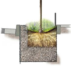 These Curbside Mini-Gardens Could Help Save New York City Billions of Dollars | Co.Exist | ideas + impact
