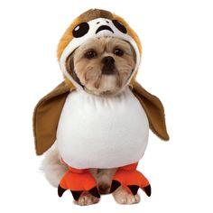 Rubie/'s PetShop Boutique Blue Silver Moon Stars Wizard Hat Halloween Costume M//L
