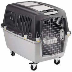 Caixa Transporte N7 Gulliver Cão Cachorro Cães Gato Avião 7 - R$ 899,99