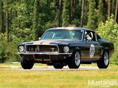 1968 Ford Mustang GT Fastback - New Kicks For An Old Pony Photo & Image Gallery