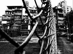 Daido Moriyama : Photography Series