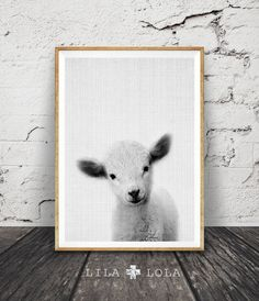 Nursery Animal Print, Cute Lamb Print, Printable Wall Art, Instant Digital Download, Black White Grey Decor,  Baby Shower Gift