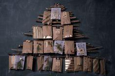 Heuer wird der Adventskalender einfach vom Baum gepflückt. 24 kleine Säckchen – voll mit Keksen, Nüssen und kleinen Geschenken – machen die Weihnachtszeit noch ein bisschen schöner. Der Adventskale…