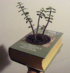 Book planter: Recycle old books into planters for a cute spring decoration.