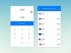Currency Converter App for IOS | Flat UI Design