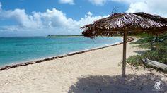 Loblolly Beach, Anegada BVI: Island Lime Videos