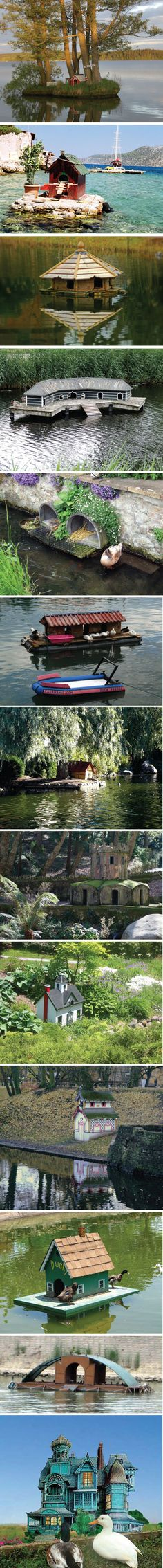 Really cool duck houses (I don't plan on having ANY ducks or geese but these houses were nice)