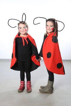 Zwei süße Marienkäfer