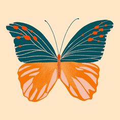 Procrastinating some more. ✨ digging this color palette. Butterfly Illustration, Fun Illustration, Botanical Illustration, Butterfly Art, Butterflies, Photo Wall Collage, Word Art, Art Inspo, Original Artwork
