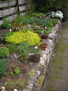 how to build a rock garden, gardening, landscape, succulents, Rock garden at Darts Hill Surrey BC I love this look using alpine plants and hoped to have our rock garden wall look similar Landscaping With Rocks, Garden Landscaping, Landscaping Ideas, Rockery Garden, Succulent Landscaping, Garden Plants, Gravel Garden, Water Garden, Rock Wall Gardens
