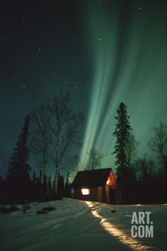 Northern Lights over Cabin Scotty Lk Petersville Rd Ak Winter Snow Photographic Print by Design Pics Inc at Art.com