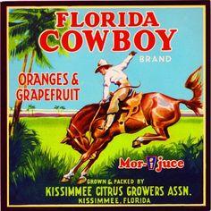 Ocala Florida Belle of Silver River Orange Citrus Fruit Crate Label Art Print Kissimmee Florida, Tampa Florida, Dade City Florida, Old Florida, Vintage Florida, Florida Girl, Leesburg Florida, Melbourne Florida, Clearwater Florida