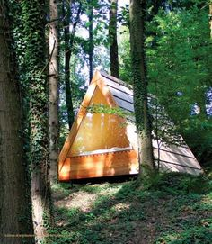 They Build 2 Strange Triangles Deep In The Woods, But When I See Inside? Whoa