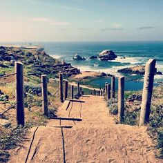 Walk the Land End trail from the Cliff house to Land's End for awesome ocean and Golden Gate bridge views
