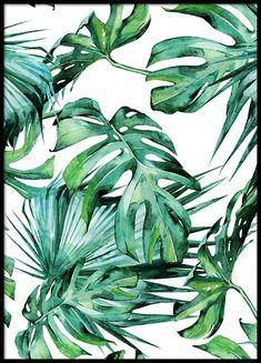 Tropical Leaves Pattern Poster in the group Prints / Floral at Desenio AB Art Et Illustration, Botanical Illustration, Kalender Design, Groups Poster, Art Mur, Kunst Poster, Online Posters, Posters Uk, Leaf Background