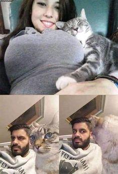 Dank Memes, funny Dank And Hillarious Memes Of All Time Memes Humor, Cat Memes, Funny Humor, Cute Funny Animals, Funny Cute, Hilarious, Super Funny, Funny Shit, Funny Posts