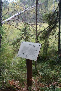 Naturpath in Virvik.
