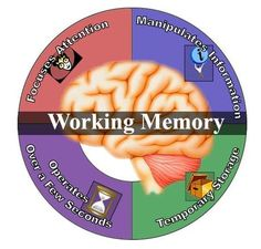 Working Memory and Education Website