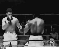 boxing gif | Tumblr