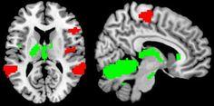 Self-Control Saps Memory - http://scienceblog.com/79974/selfcontrol-saps-memory/