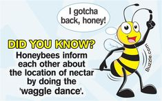 Honeybees inform each other about the location of nectar by doing the waggle dance.