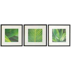 Green Leaf Framed Prints | Dunelm