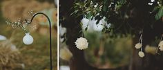A beautiful winter wedding in Australia with impeccable attention to detail and animal inspired décor. Woodland Wedding, Winter Photography, Dandelion, Flowers, Plants, Inspiration, Beautiful, Biblical Inspiration, Wedding In The Woods