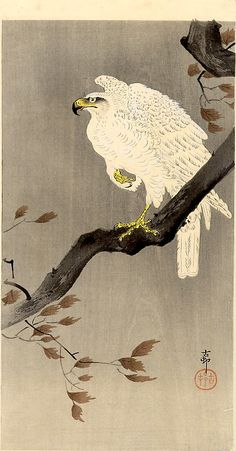 White Eagle by Ohara Koson
