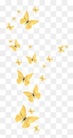 Background Images For Editing, Black Background Images, Photoshop Elementos, Flower Png Images, Picsart Png, Photo Frame Design, Png Photo, Butterfly Wallpaper, Photoshop Design