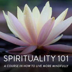 Need some pointers in living more spiritually in your day-to-day life? Our latest feature, Spirituality 101: How to Become More Spiritual in Your Daily Life, brings words of wisdom from 12 different authors! Get easy, actionable steps towards a more mindful life today:
