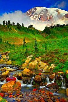 Bonito paisaje