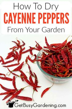 Cayenne Pepper Recipes, Hot Pepper Recipes, Cayenne Peppers, Dried Chillies, Dried Peppers, Homemade Spices, Homemade Salsa, Canned Food Storage, Fresh Vegetables