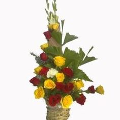 Are you really passionate about giving surprises and celebrating every event at Midnight ?send midnight flower delivery in bangalore to your special one. Buy Flowers, Fresh Flowers, Beautiful Flowers, Special Person, Special Day, Online Flower Delivery, Order Flowers Online, Single Rose, Wishes For You