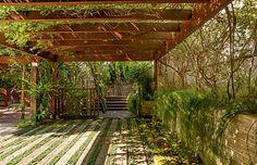 Garagem | Para abrigar os carros, o pergolado de madeira na entrada da casa é coberto por primaveras com flores vermelhas e brancas. Na base, rente ao muro, crescem amendoins-bravos  (Foto: Edu Castello)
