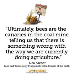 In case you missed it, check out GMO Inside's exclusive interview features Lisa Archer from Friends of the Earth U.S. Check it out: http://gmoinside.org/q-lisa-archer-future-gmo-technology #GMOs #savethebees #agriculture