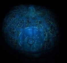 Death Star styled (fake) pumpkin - UV reactive & glow-in-the-dark details
