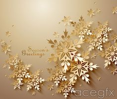 Golden snowflake greeting cards vector