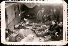 Bergen Belsen, Germany, Prisoners sitting among corpses in a train car.