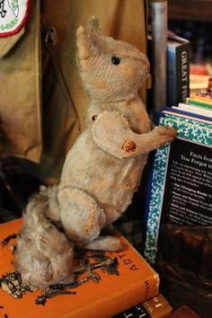 Antique Steiff Squirrel. Pre-war. This fellow is fabulous, great face and worn nicely. No button, has wear holes. Had a squeaker, its there but doesn't work. He is 9 1/2 inches tall. Tail is 5 1/2 inches.   $ 895.00