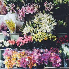 Spring Flowers | shahidaselamat | VSCO