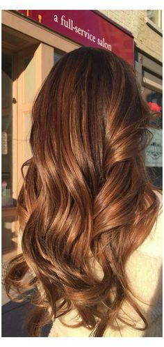 Honey Brown Hair Color, Chestnut Brown Hair, Brown Hair Shades, Hair Color Caramel, Brown Hair With Highlights, Ash Brown, Chesnut Hair Color, Light Brown Hair Colors, Ginger Brown Hair