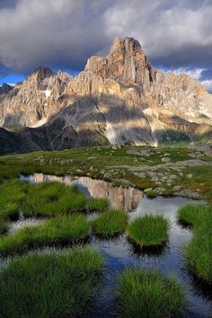 A mirror in the grass, Passo Rolle - Dolomites, Italy (by Coltri Simone).