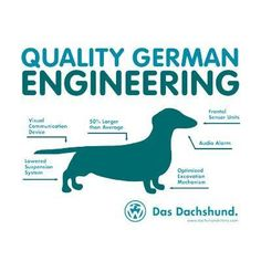 "German Engineering: Das Dachshund (should actually be ""Der Dachshund"") ;)"