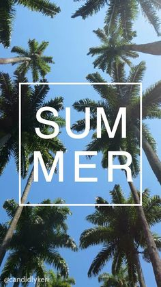 Tumblr 'SUMMER' iPhone Wallpaper #coconutpalms