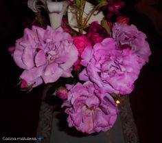 Rosas de color malva <3