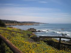 Cambria California - Another one of the most beautiful places I've visited. One of my favourite beaches is at Shamel Park.