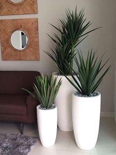 Living Room Designs, Living Room Decor, House Plants Decor, Bedroom Plants, Farmhouse Bedroom Decor, Interior Plants, Indoor Plants, Flower Pots, Diy Home Decor