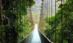 "Regnskovsvandring i Costa Rica. Kilde: <a href=2http://www.flickr.com/photos/baxterclaws/"">Ryan Kozie</a>"